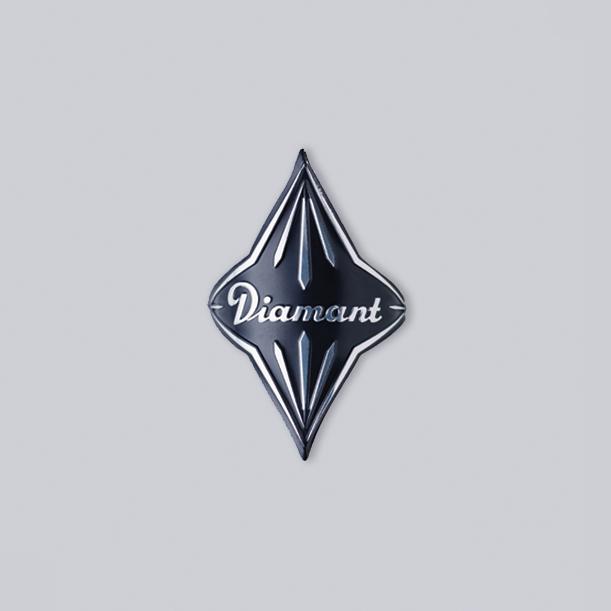 diamant-fahrrad-dresden-1